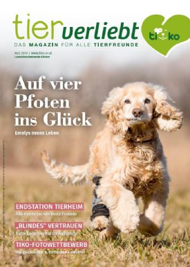 Titelseite TIERverliebt 2/2019 © TiKo