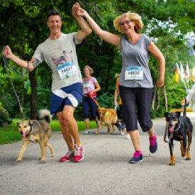 Hundelauf © Kärnten läuft