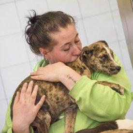 Tierpflegerin mit Welpe © Sonja Widerström