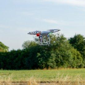 Drohne © TiKo