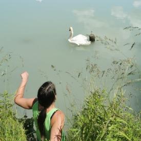 Unsere furchtlose Tierretterin am Weg ins Wasser um einen Schwan von einer Angelschnur zu befreien © TiKo