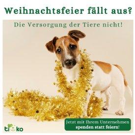 Spenden statt Feiern © TiKo