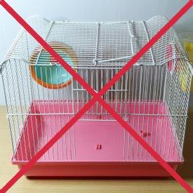 Nicht artgerechter Hamsterkäfig © TiKo