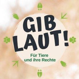GIB LAUT! Banner © TiKo