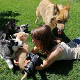 Nina Zesar mit Huskeywelpen © TiKo
