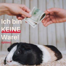 Tiere sind keine Ware © Gib Laut